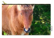 Curious Foal Carry-all Pouch