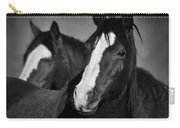 Curious Horses Carry-all Pouch