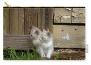 Curious Kittens Carry-all Pouch