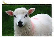 Curious Lamb Carry-all Pouch