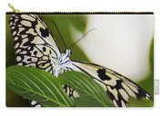 Curious Paper Kite Carry-all Pouch