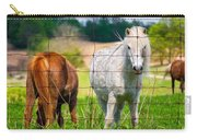 Curious Pony Carry-all Pouch