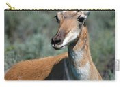 Curious Pronghorn Carry-all Pouch