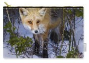 Curious Red Fox Carry-all Pouch
