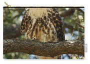 Curious Redtail Carry-all Pouch