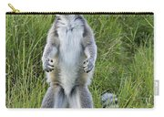Curious Ring-tail Carry-all Pouch