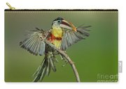 Curl-crested Aracari About To Perch Carry-all Pouch