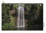 Curtain Falls Carry-all Pouch