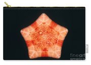 Cushion Star Carry-all Pouch