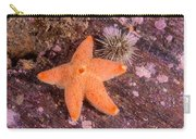 Cushion Winged Sea Star Carry-all Pouch