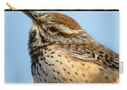 Cute Cactus Wren Carry-all Pouch by Robert Bales