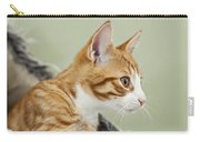 Cute Ginger Kitten On The Loookout Carry-all Pouch