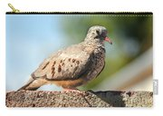 Cute Inca Dove Carry-all Pouch by Robert Bales