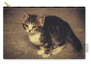 Cute Kitten Carry-all Pouch