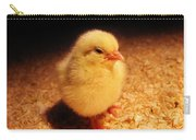 Cute Little Chick Carry-all Pouch