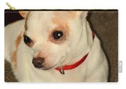 Cute N Sassy Carry-all Pouch