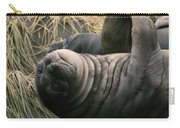 Cute Seal Carry-all Pouch