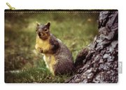 Cute Squirrel Carry-all Pouch by Robert Bales