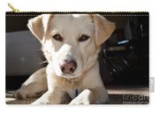 Cute White Dog Carry-all Pouch