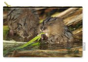 Cutest Water Rats Carry-all Pouch