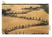 Cypress Tree Lined Road Carry-all Pouch