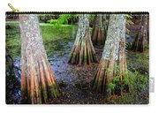 Cypress Waltz Carry-all Pouch by Karen Wiles