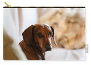 Dachshund Portrait Carry-all Pouch