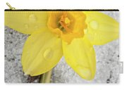 Daffodil In Spring Snow Carry-all Pouch