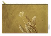 Daffodil Macro Carry-all Pouch