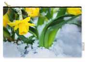 Daffodils In The Snow  Carry-all Pouch