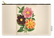 Dahlia Coccinea From A Begian Book Of Flora. Carry-all Pouch