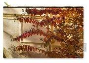 Dainty Branches - Warm Autumn Colors - Washington D C Facades Carry-all Pouch
