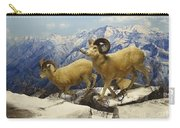 Dall Sheep Diorama Carry-all Pouch