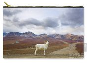 Dalls Sheep Ram Denali National Park Carry-all Pouch