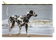 Dalmatian By The Sea Carry-all Pouch