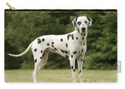 Dalmatian Dog Carry-all Pouch