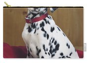 Dalmatian In Basket A108 Carry-all Pouch