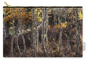 Dancing Aspens Carry-all Pouch