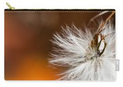 Dandelion Seed Head And Fall Color Background Carry-all Pouch