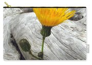 Dandy Driftwood Carry-all Pouch