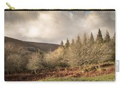Dartmoor View Carry-all Pouch