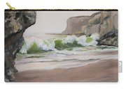 Davenport Cove 2 Carry-all Pouch