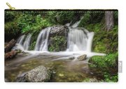 Day 1000 - Lower Forest Glen Falls Carry-all Pouch