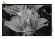 Day Lilies In Black And White Carry-all Pouch