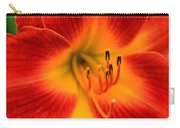 Day Lily1 Carry-all Pouch