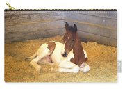Day Old Colt Carry-all Pouch