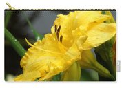 Daylilies Abound Carry-all Pouch