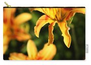 Daylillies0107 Carry-all Pouch