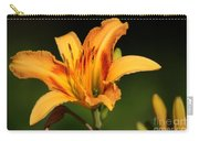 Daylillies0131 Carry-all Pouch