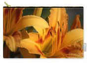 Daylillies0185 Carry-all Pouch
